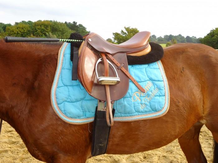 L'équipements d'un cheval réjoute du poids