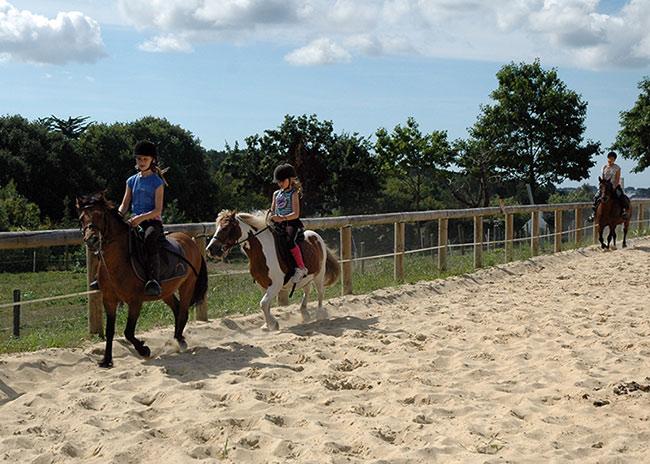 Reprise en carrière au Centre Equestre de Baden
