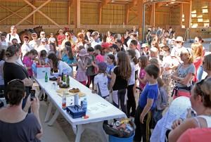Concours interne hippique au Centre Équestre de Baden