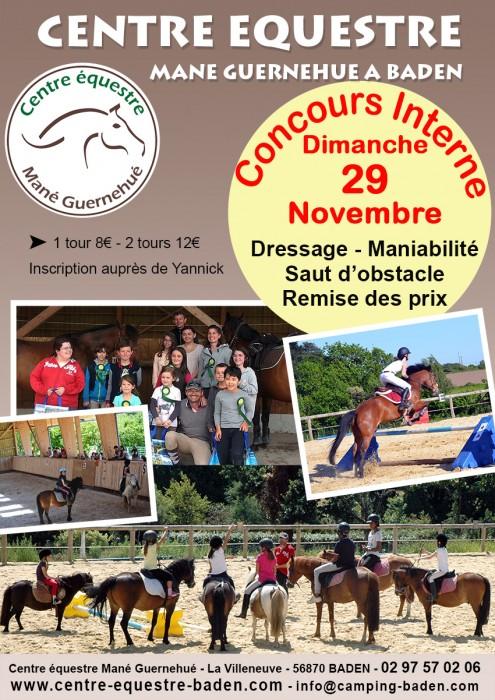 Concours interne au Centre équestre de Baden dimanche 29 novembre 2015