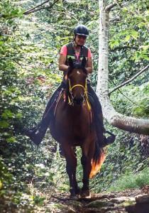 Randonnée à cheval-Photo Simon BOURCIER