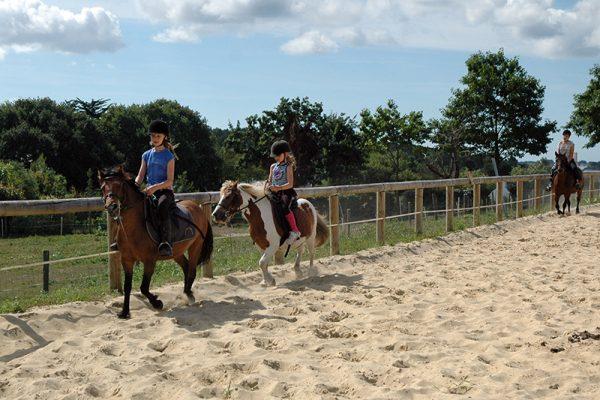 Cours particuliers à poney