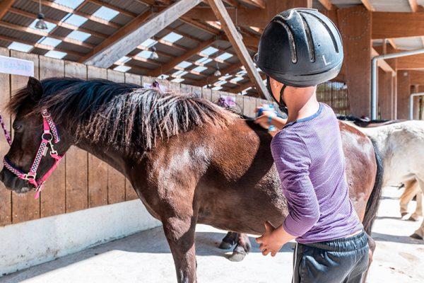 Stage d'équitation soins aux poneys