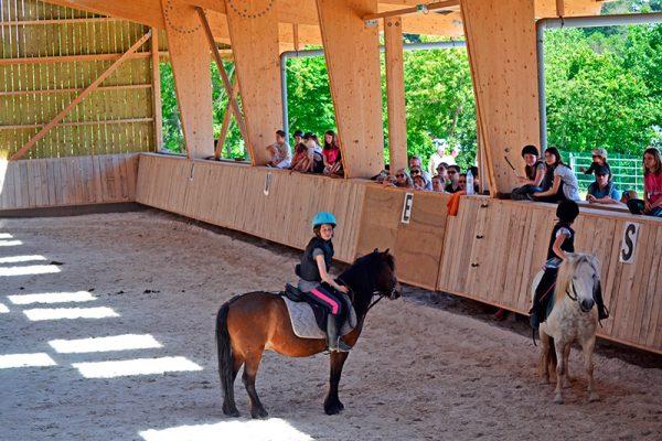 Stage d'équitation dans le manège couvert