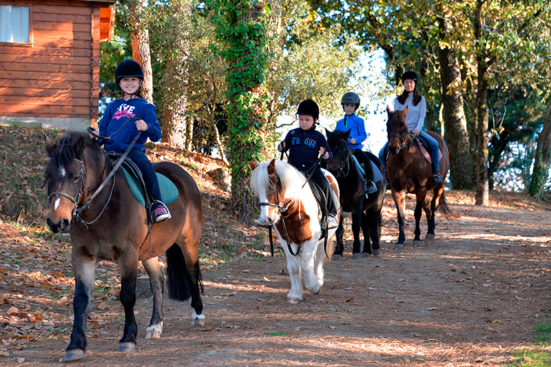 Balade à poney encadrée par l'instructrice
