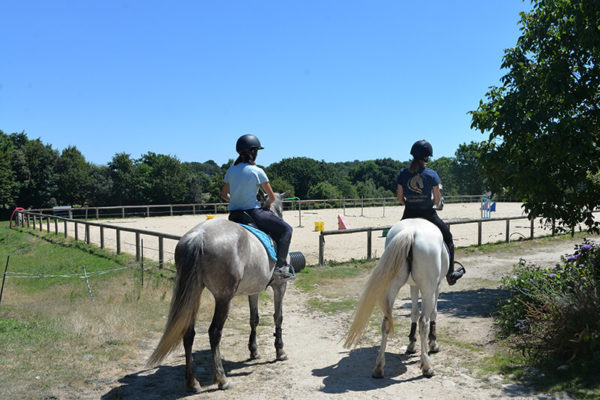 Cours d'équitation en carrière