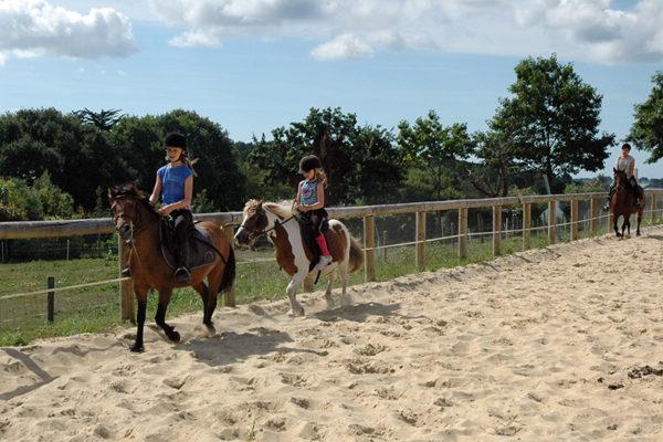 Cours d'équitation par petits groupe
